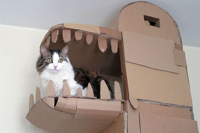Cat in art structure